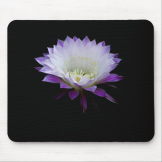 Belle of the ball, night blooming cactus mouse pad
