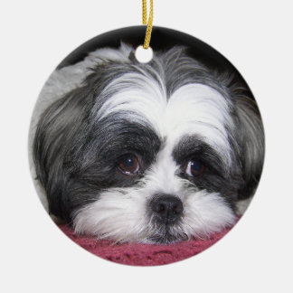 Belle The Shih Tzu Dog Ceramic Ornament