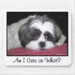 Belle The Shih Tzu Dog Mouse Mat