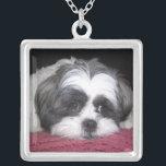 "Belle The Shih Tzu Dog Silver Plated Necklace<br><div class=""desc"">A Shih Tzu Dog Breed Photograph.</div>"