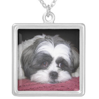 Belle The Shih Tzu Dog Square Pendant Necklace