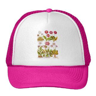 Belles in Pink Trucker Hat