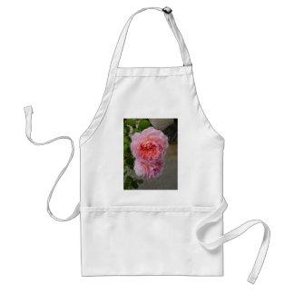 Belles Roses de Brantôme Apron Delantal
