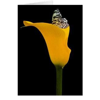 Belleza amarilla tarjeta pequeña