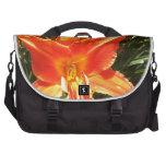 Belleza anaranjada bolsas para portátil