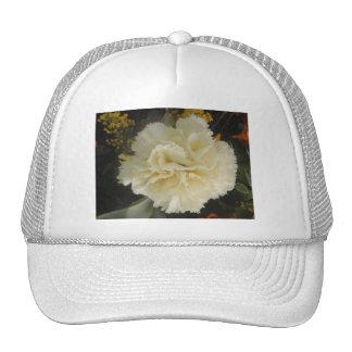 Belleza blanca del clavel del gorra
