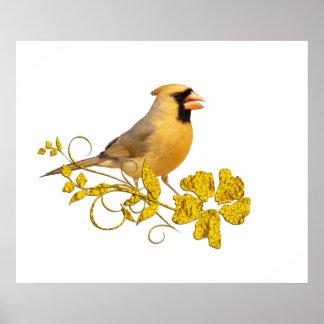 Belleza cardinal amarilla impresiones