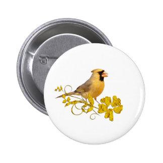 Belleza cardinal amarilla pins