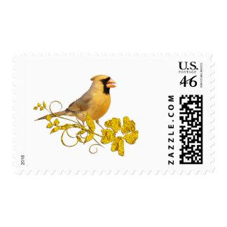 Belleza cardinal amarilla