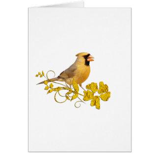 Belleza cardinal amarilla tarjetón