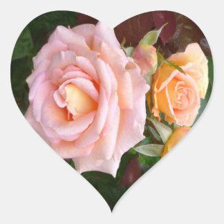 Belleza color de rosa pegatina en forma de corazón