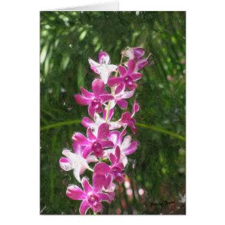 Belleza de Hawaii Tarjeta De Felicitación