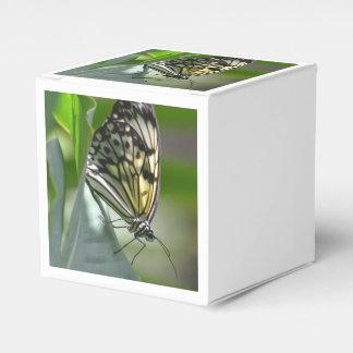 Belleza de la mariposa caja para regalo de boda