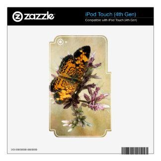 Belleza de la mariposa iPod touch 4G calcomanías