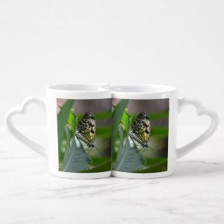 Belleza de la mariposa set de tazas de café