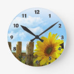 Belleza de la naturaleza del girasol reloj