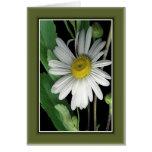 Belleza de la naturaleza r/c17 tarjeta de felicitación