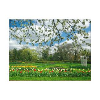 Belleza de la primavera en el parque de Elizabeth Impresión En Lienzo