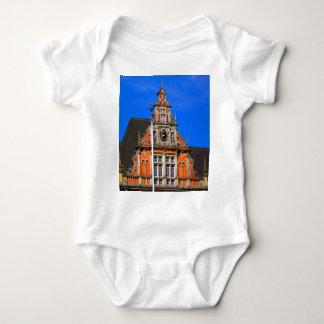 Belleza del ayuntamiento antiguo de Harburg del Playeras