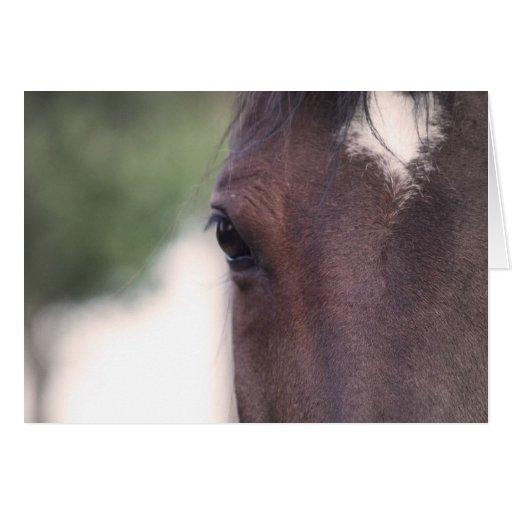 Belleza del caballo felicitacion