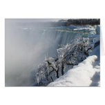Belleza del invierno: Niagara Falls Tarjetas