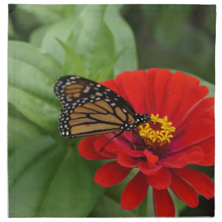 Belleza del monarca servilleta
