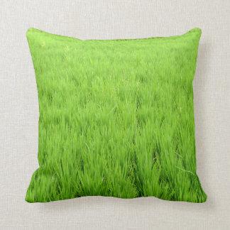 Belleza del mundo verde cojines