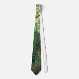 Belleza del pavo real - lazo corbata