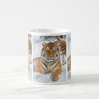 Belleza del tigre en nieve taza
