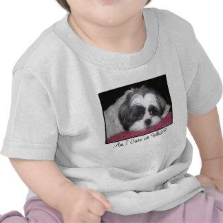 Belleza el perro de Shih Tzu Camiseta