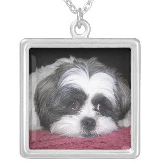 Belleza el perro de Shih Tzu Colgante