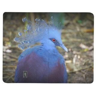 Belleza emplumada azul cuadernos