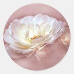 BELLEZA EN la NIEBLA - color de rosa oscuro Etiqueta Redonda