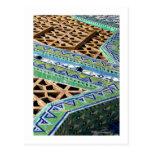 Belleza en pequeños pedazos tarjeta postal