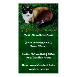 Belleza felina tarjetas personales