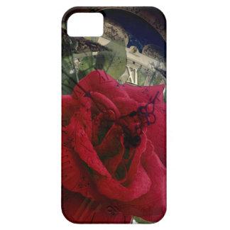 Belleza intemporal iPhone 5 fundas
