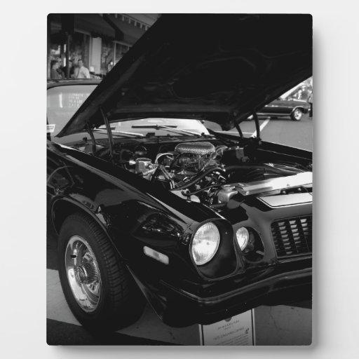Belleza negra placas con foto