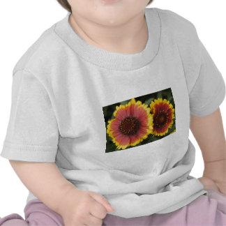Belleza reflejada camisetas