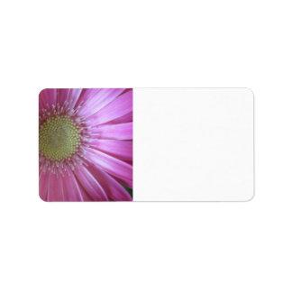 Belleza rosada de la margarita etiqueta de dirección