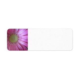 Belleza rosada de la margarita etiqueta de remitente