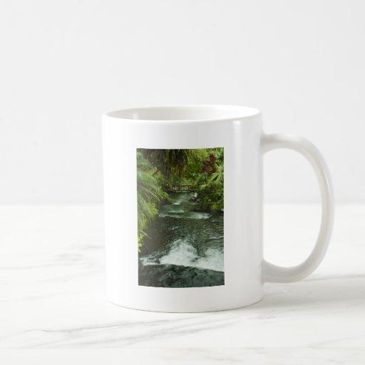 Belleza tropical taza clásica