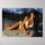 Bellezas costeras de Carolina: Poster C de 2013 ca