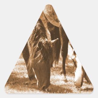 Bellezas de Brown Colcomanias De Triangulo