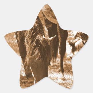 Bellezas de Brown Calcomanías Forma De Estrellas