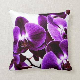 bellezas de la orquídea cojín
