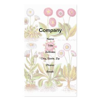 Bellezas en rosa tarjetas de visita