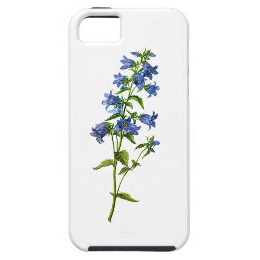 Bellflower Ortiga-Con hojas azul extraído de la na iPhone 5 Coberturas