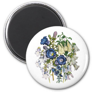 Bellflowers Magnet