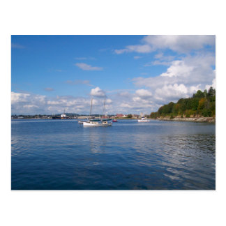 Bellingham Bay Boats Postcard