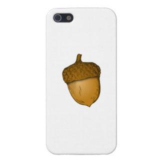 Bellota del árbol iPhone 5 funda